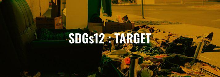 SDGs12ターゲット