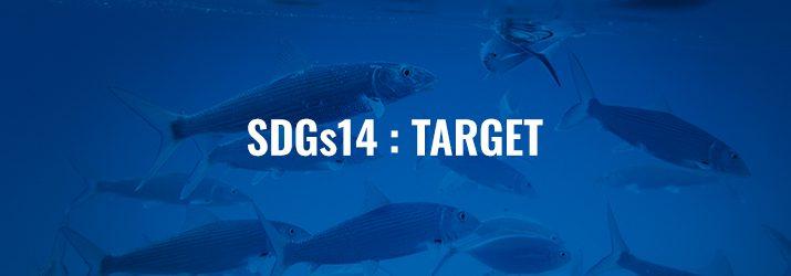 SDGs14ターゲット