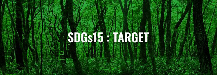 SDGs15ターゲット