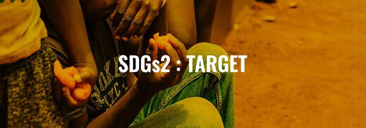 SDGs2ターゲット