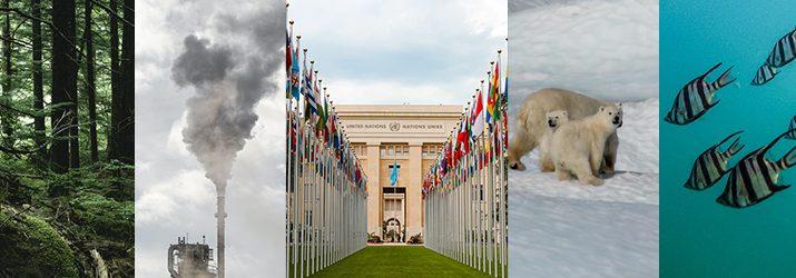 国連持続可能な開発サミットで2030アジェンダが採択