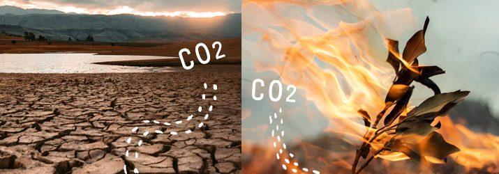 二酸化炭素減らすワケ