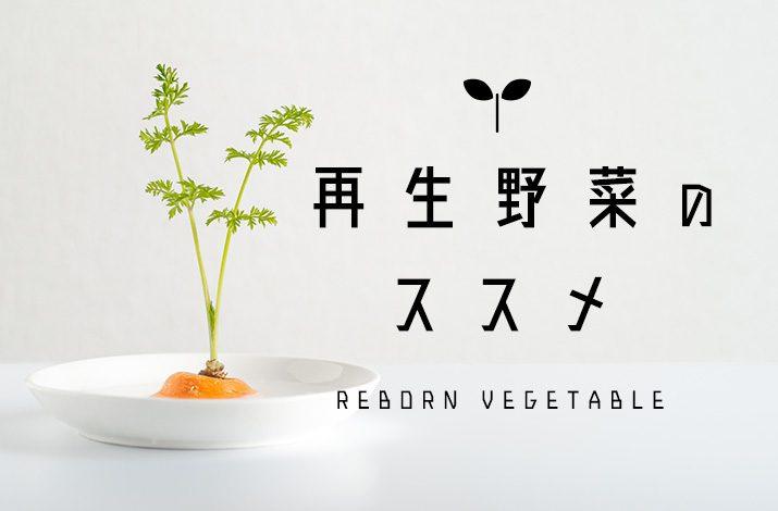 野菜を家庭で簡単に再生!「再生野菜」のススメ