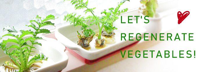 野菜を再生してエコに、みずみずしい暮らしを